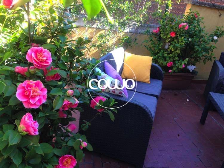 Le rose del Cowo Stazione Centrale